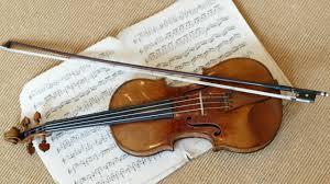 foto viool 2